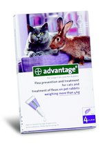 Advantage Large Cats and Rabbits >4kg