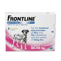Frontline Plus Spot On For Large Dogs 20-40kg 6 Pipettes