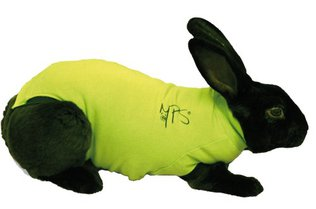 Medical Pet Shirt for Rabbits XX Small